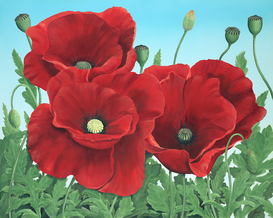 Poppy Painting small